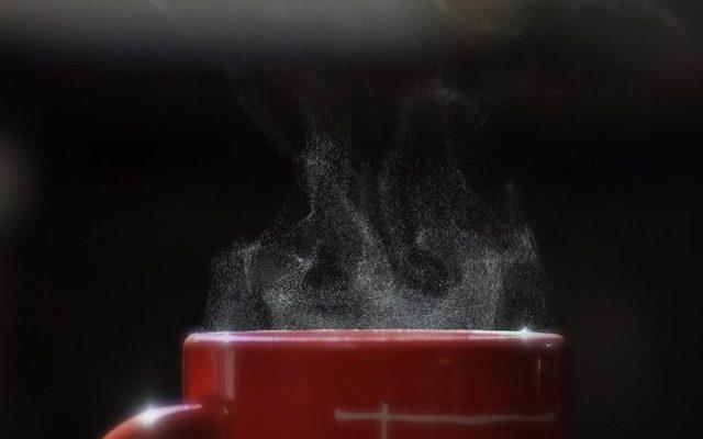 コーヒーのかす